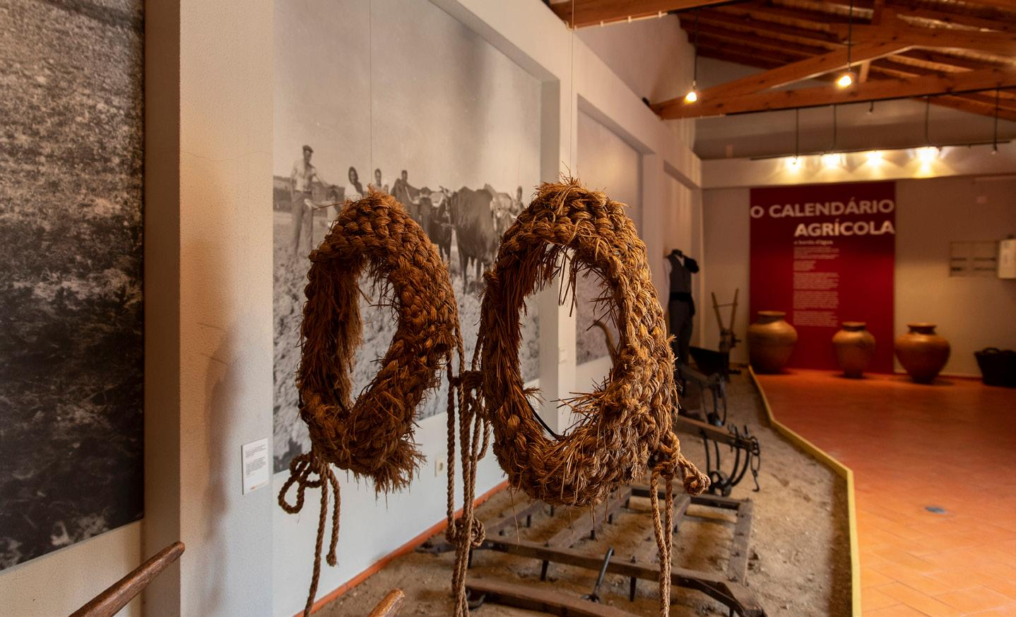 Museu Municipal de Benavente