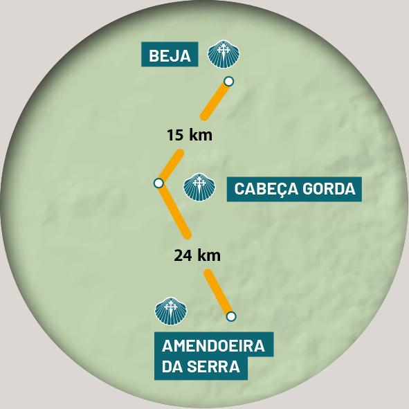 etapa 4 - nascente