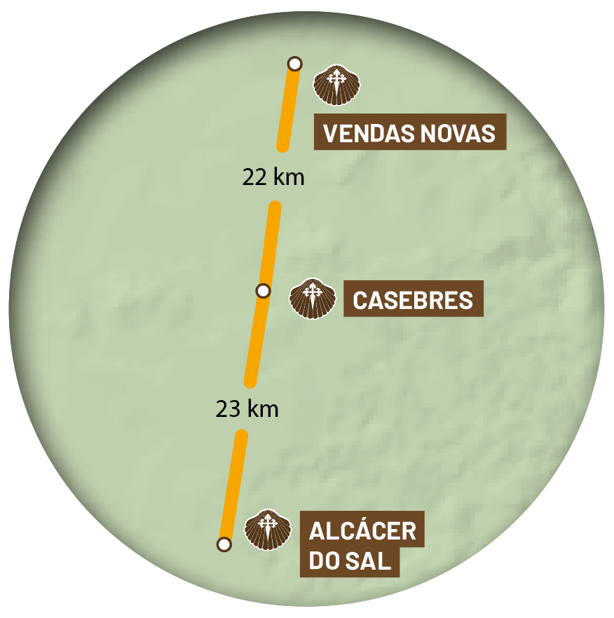 etapa-11-central